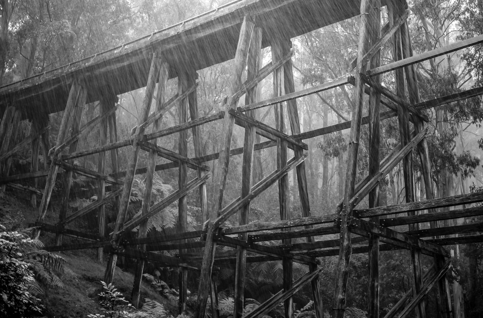 102_noojee-rail-bridge-in-downpour-e0cb98d31e8610213b97660db974797104060fd4