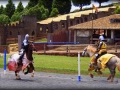 083_jousting-269fd8bc5a74f3502d76aed852a004aab902f8b2